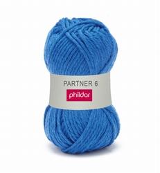 Partner 6 bleuet 0043