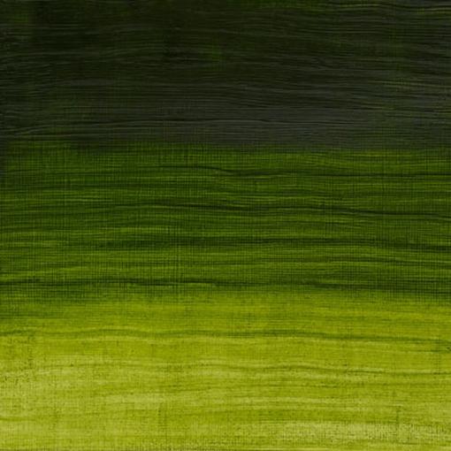 Artisan Permanent Sap Green 37 ml.